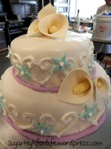 cakeweek9